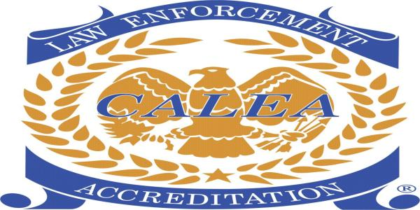 Of AstroTurfing, and one-sided Electronic Frontiers around Privacy /img/calea-logo.jpg