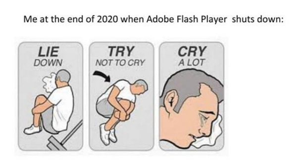 No, THESE 9/11 losses are not Adobe's fault /img/cry-for-flash.jpg