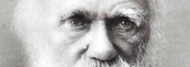 Darwinismo digitale, avanti tutta /img/darwin.png