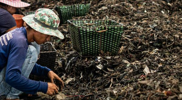 Where has all the e-waste gone? /img/e-waste-goes-to-thailand.jpg