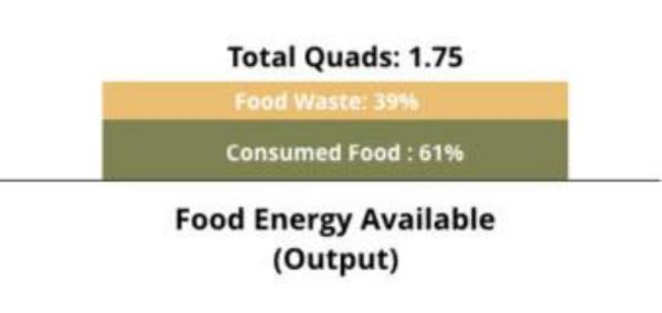 The future is only rural, unless cities... /img/energy-input-and-output-in-the-food-system.waste.jpg