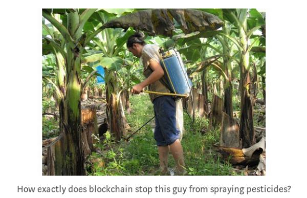 Some questions about mangoes, blockchain and fraud /img/pesticides-in-spite-of-blockchain.jpg