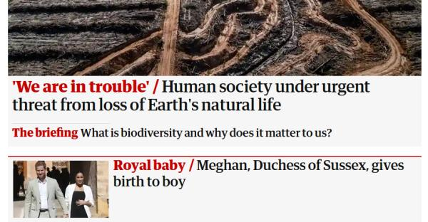 What is worst, the Royal Baby, or beer at the Rugby World Cup? /img/royal-baby-vs-mass-extinction.jpg