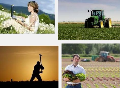 Oltre le Smart City: innovazione utile per tutto il resto d'Italia /img/startup_agricoltura.png