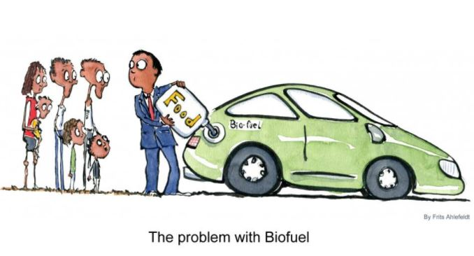 Thoughts on energy (1 of 3): role and limits of Renewables /img/the-problem-with-biofuel.jpg