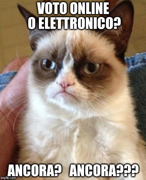 Lo ripeto: voto online o elettronico? No, grazie /img/voto-online-o-elettronico-no.jpg